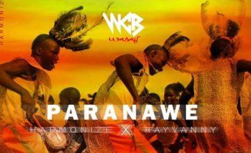 Tokeo la picha la Harmonize Ft Rayvanny - Paranawe